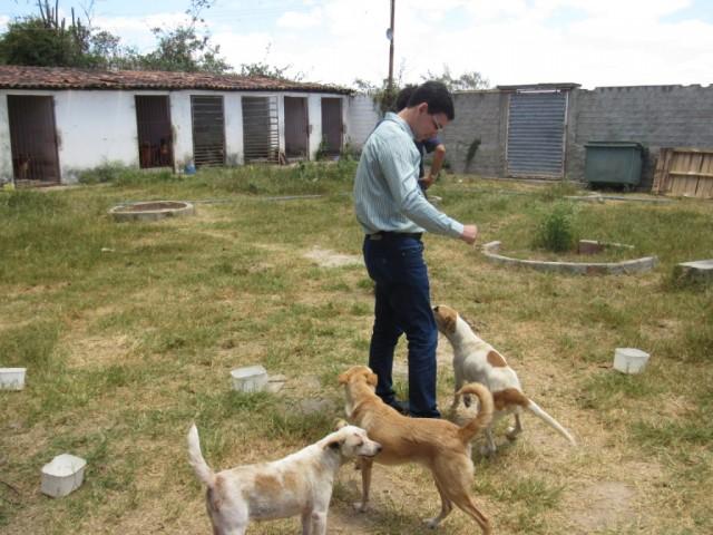 Alberes Lopes cria projeto Animal Comunitário
